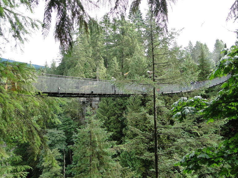 Skip the Line:Capilano Suspension Bridge Park Ticket w/Shuttle from Vancouver photo 21