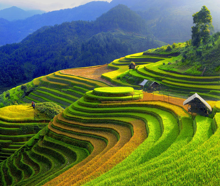 Sapa Trekking Tours - 2 Days 1 Night Stay At Homestay photo 17