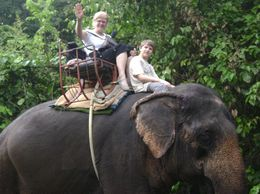 Not only did we ride through the tropical jungle, but the elephant walked right down into a river, with water up to its belly! Of course, the elephant filled his trunk with water and squirted it out..., Rebecca G J - October 2009
