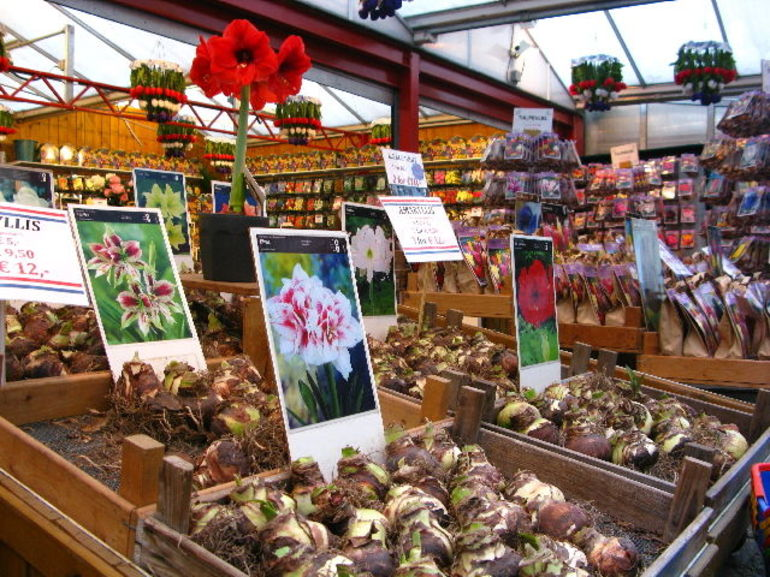 Amsterdam Food Tour - Amsterdam