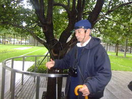 David telling us about the tree that was saved after the 9/11 bombings , jillaharrison - October 2014