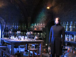 I loved the shelves of ingredients and Snape, of course! , Dawn L - October 2015
