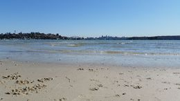 View from Rose Bay , Lucy - August 2015