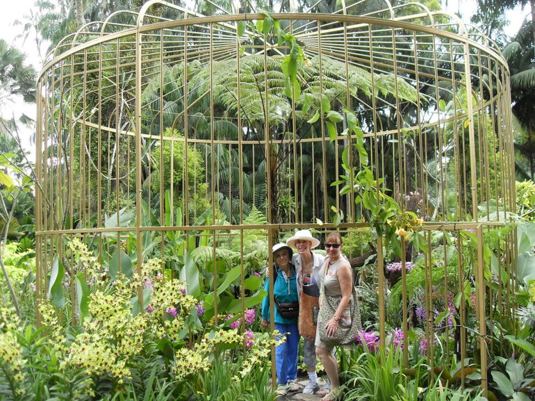 The Orchid Gardens - Singapore