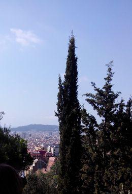 Udsigt over Barcelona mens guiden - igen på et dejligt skyggested - fortæller , Birgit Friis S - July 2015