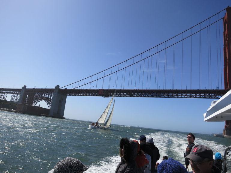 Windsurfers - San Francisco