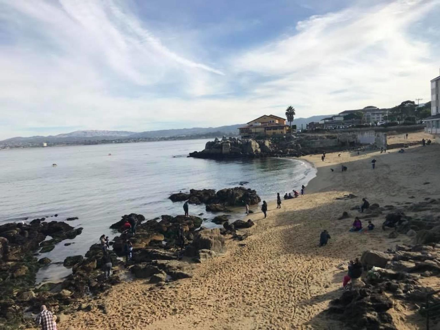 MÁS FOTOS, Monterey, Carmel and 17-Mile Drive - Full Day Tour from San Francisco
