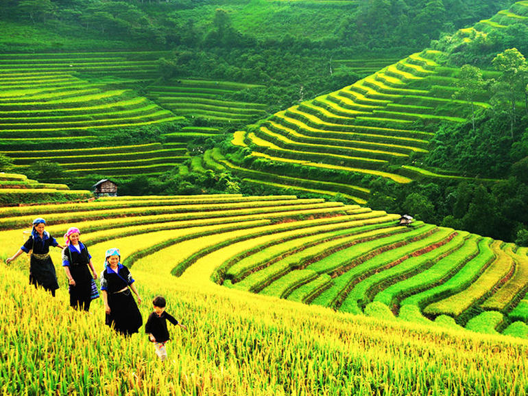 Sapa Trekking Tours - 2 Days 1 Night Stay At Homestay photo 12