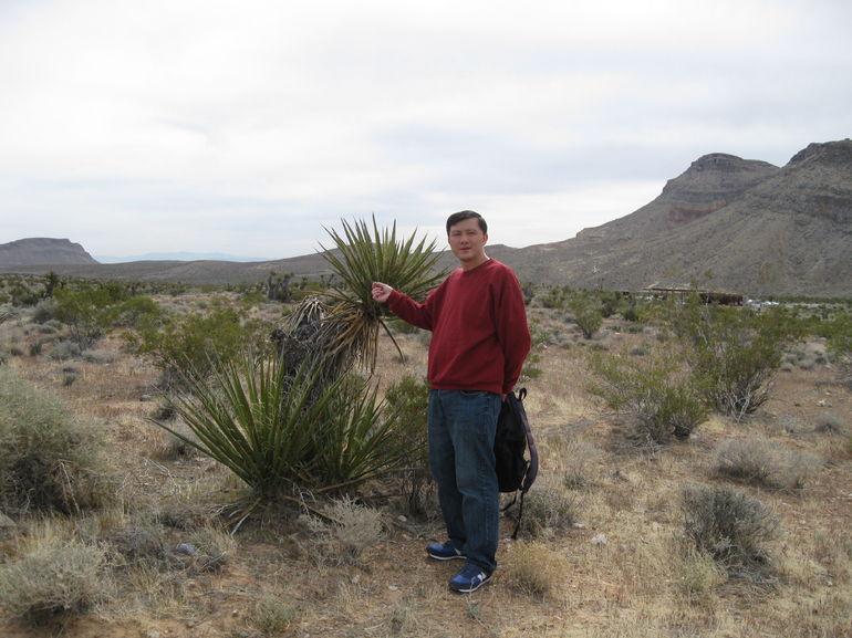 I and my desert tree friend - Las Vegas