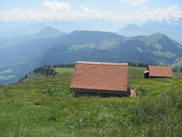 View from Mount Rigi , Erin T - August 2013