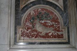 Dove in Saint Peter's. , Sharon M - May 2015