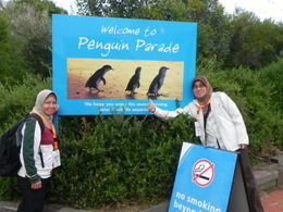 on the way to be up close and personal with the fairy penguins... , ABDULLAH M - October 2011