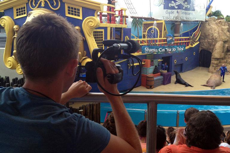 SeaWorld Orlando - Orlando