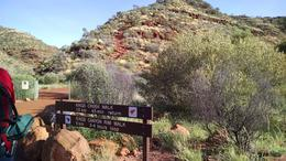 Kings Canyon , lauriegreen49 - May 2017
