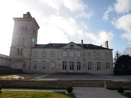 Beautiful Chateau Lagrange, Rachel - March 2014
