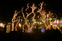 Some of the Christmas decorations that the resort put up for Christmas Eve., Tighthead Prop - November 2010