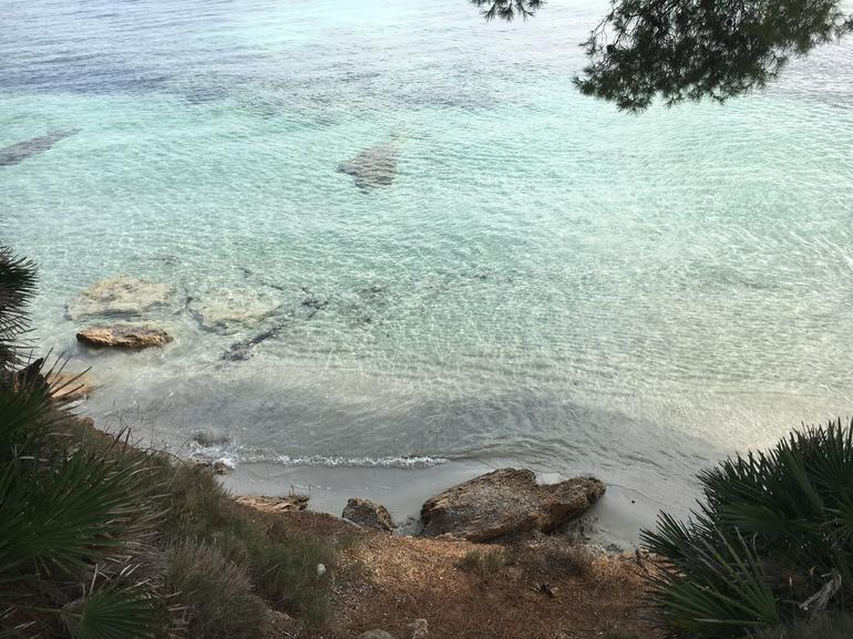 North of Mallorca Highlights Guided Day Tour