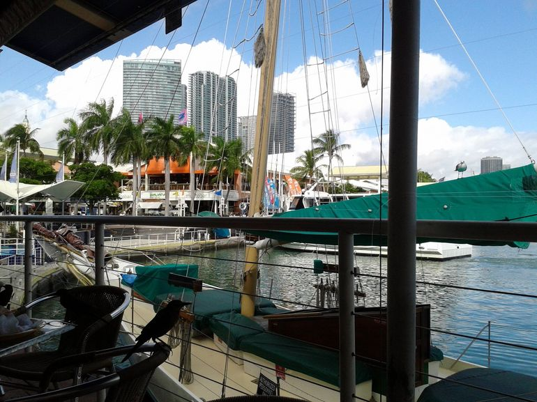 Bayside - Miami