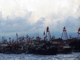 Traditional fishing boats anchored in Aberdeen Harbor, as seen from the sampan boat ride. , BethanieKay - July 2014
