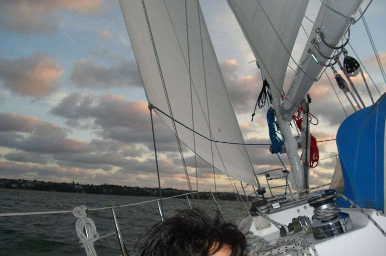 Sails Up!! - Auckland