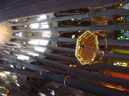Basilica trusses , Cheryl E - May 2014