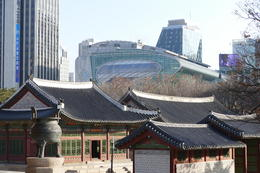 Ancient palace with modern Seoul city hall in background , Todd H - January 2017