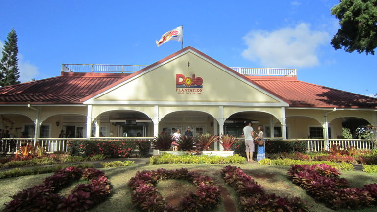 Dole plantation - Oahu