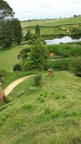 Hobbiton is part of a hilly sheep farm, though the hills are not too bad and it is wheelchair accessible. Note that Viator does not operate tours, they arrange them and then another organization..., Lecia B - December 2014