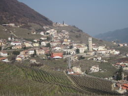 The prosecco vineyard, with yet more tastings in prospect , Susan E - March 2012