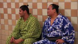 Sumo break - July 2011