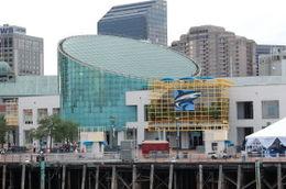 Aquarium of the Americas , Janet L D - June 2012