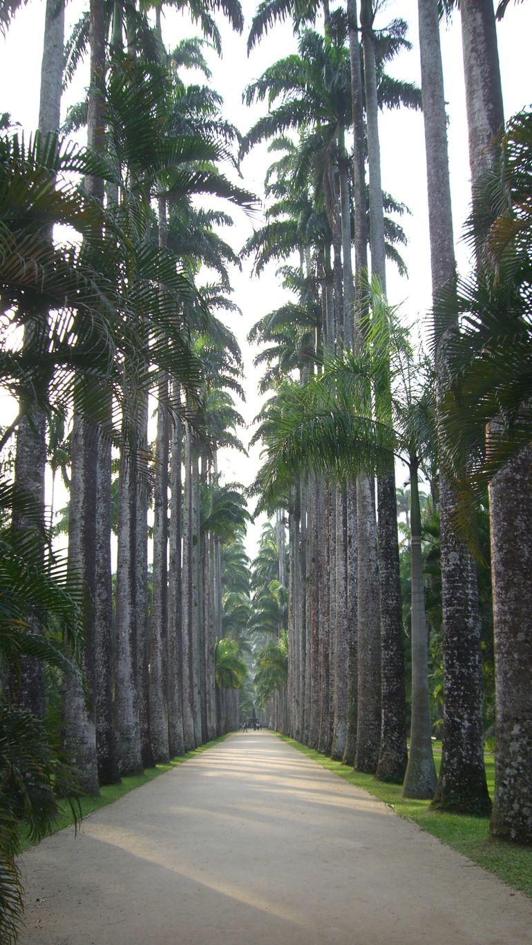 Entrance to the Garden - Rio de Janeiro