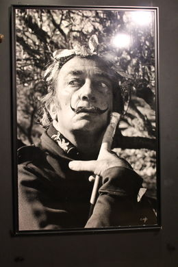 The Dali Exposition is worth viewing. Very Unusual. , Teri S - July 2011