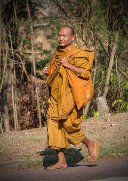 Local monk , Bruce C - June 2015