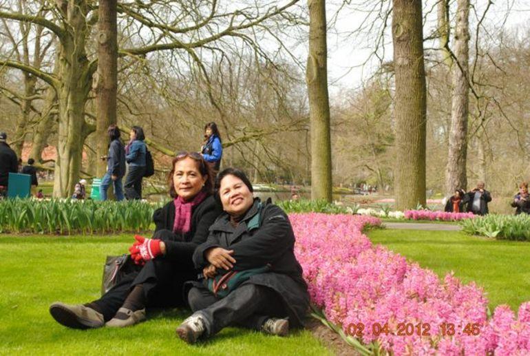 Realxing Among Hyacinths - Amsterdam