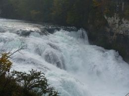 Rhine Falls is Europe's largest waterfall, Rajesh S - November 2008