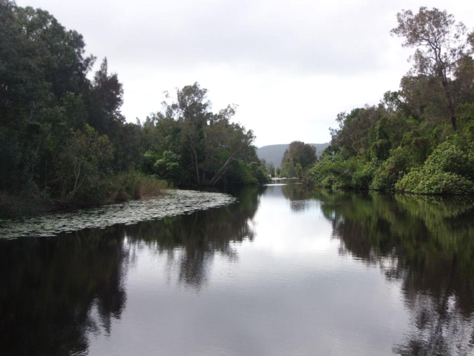 MÁS FOTOS, Serenity Cruise to Australia's Everglades