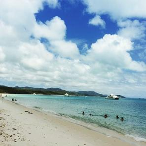 Whitehaven beach one day tour