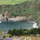 Recorrido privado de 8 horas en vehículo 4x4 desde Ponta Delgada, Ponta Delgada, PORTUGAL