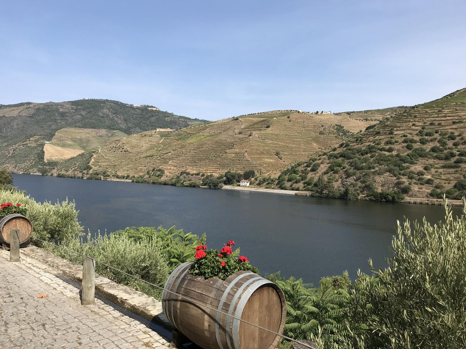 MAIS FOTOS, Douro Valley Tour: Wine Tasting, River Cruise and Lunch From PORTO - Pickup free