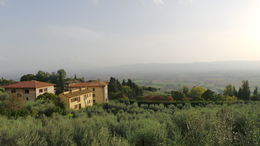 the view on the way to Santa Chiara , Josianne X - October 2014