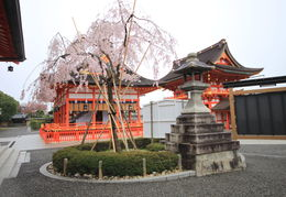 The beautiful Fushimi Inari-taisha , Eric G - April 2013