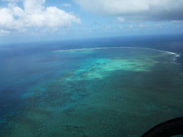 View of the reef during the heli ride , Marie Anne F - February 2014