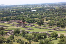 The complex was huge - it is believed that over 200,000 people lived here!, Bandit - September 2012