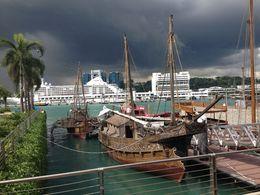 Sentosa Island, Cat - August 2013