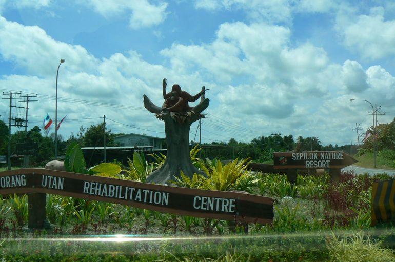 Sepilok - Kota Kinabalu