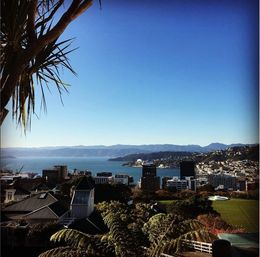 A beautiful day in Wellington , Tanya C - June 2016