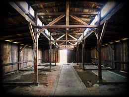 Auschwitz-Birkenau , Bdette - June 2012