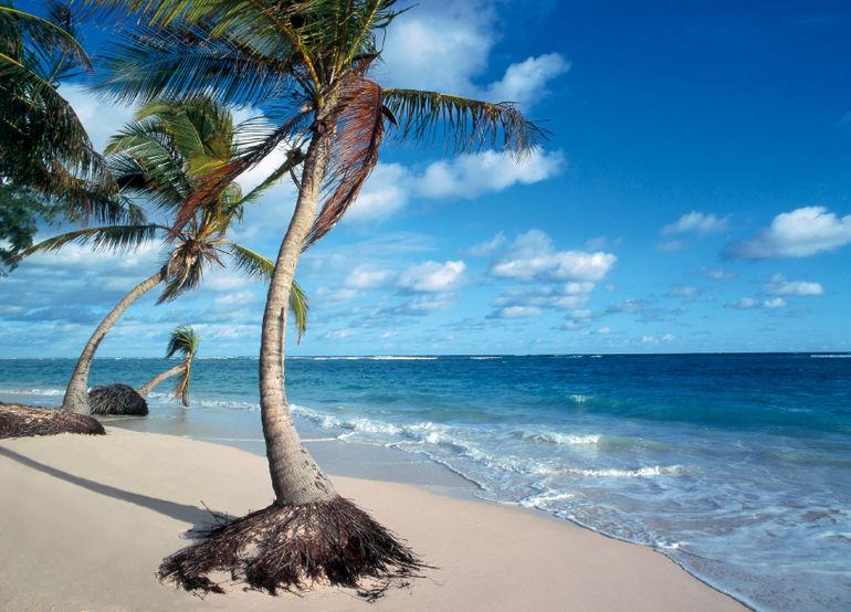 Bavaro Beach - Punta Cana