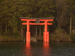 a shrine in the water , Warren C - November 2011